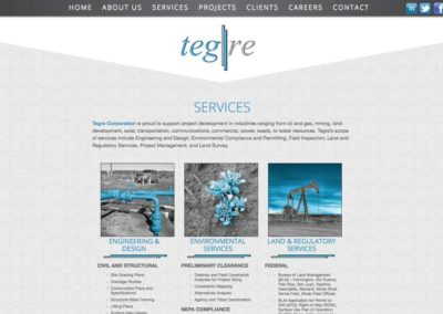 client_tegrecorp